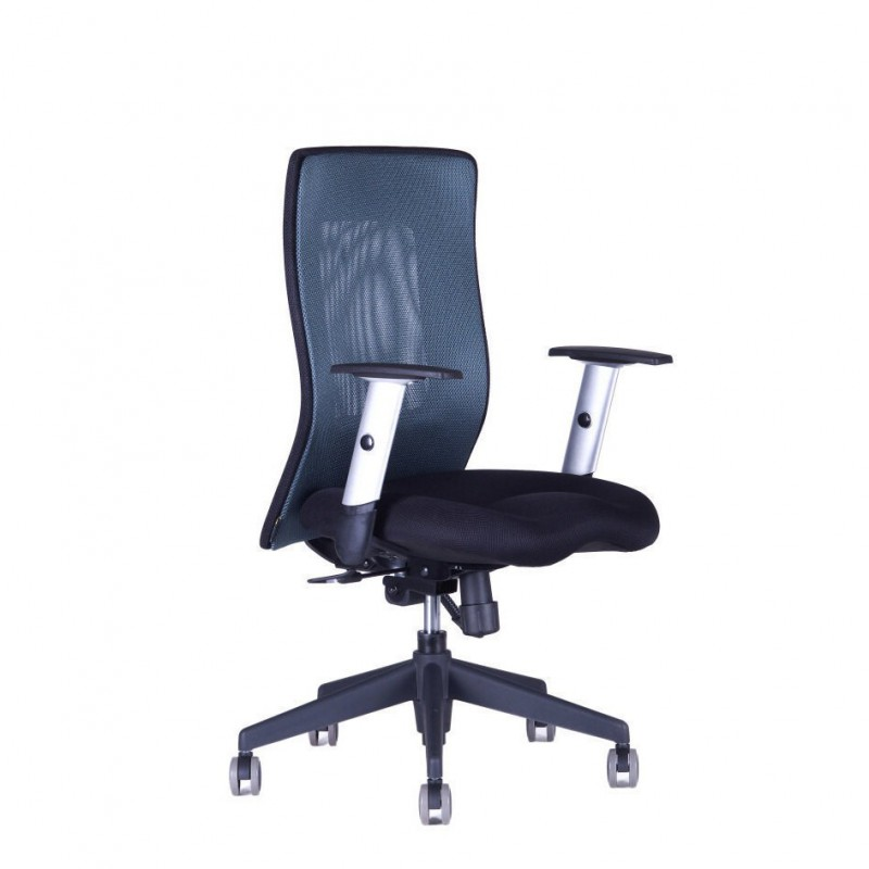 Kancelářská židle, 14A11, modrá (CALYPSO XL BP)